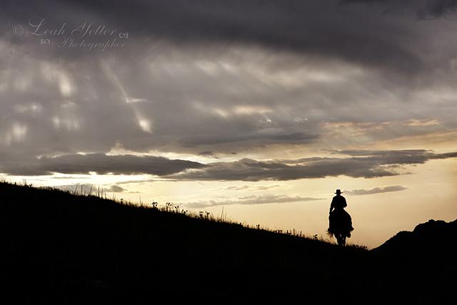Daybreak | ©Leah Yetter Photographer